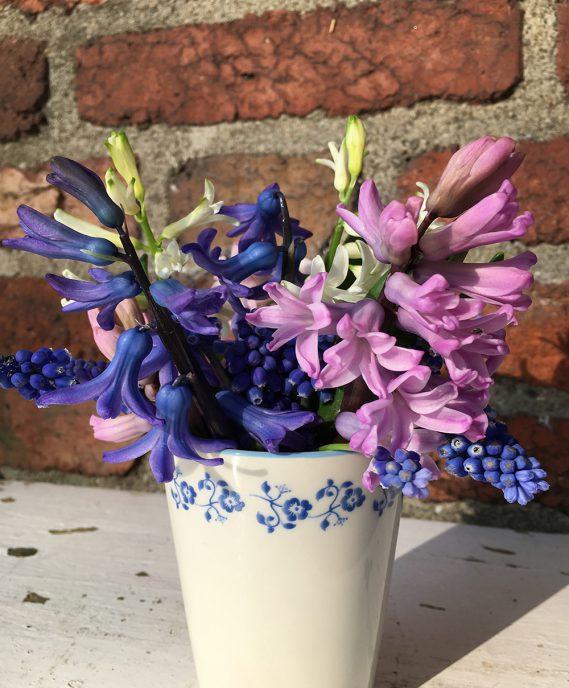blaulastiger Gartenstrauß in Tasse vor Steinwand