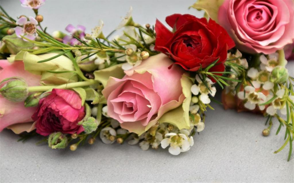 Blumenkranz, Blumenliebe, verliebt, Frühling, Rosen, Wachskraut, Freude