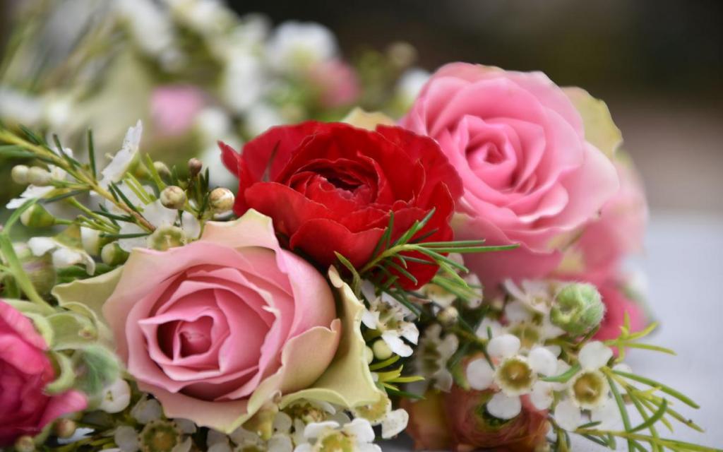Blumenkranz, Blumenliebe, Frühling, verliebt, Lieblingsjahreszeit, Detail, Rosen und Wachsblumen
