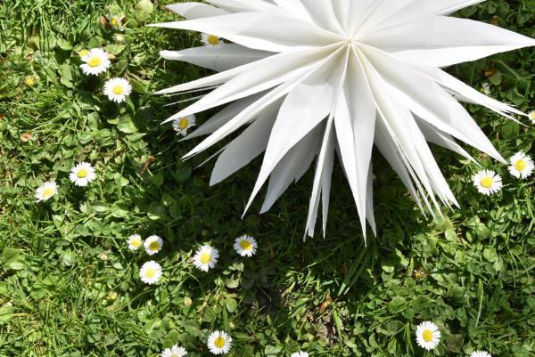 DIY, Butterbrotstüten-Stern, Dekoration, Feierlaune, festliche Girlande, selbstgemacht, einfaches DIY, Garten, Draussenzeit, Feierlaune