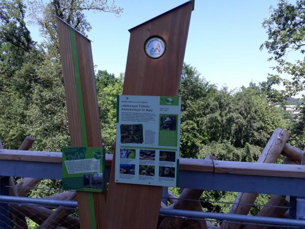 Schild Baumwipfelpfad Bad Iburg Landesgartenschau, Information, Ausflugsziel, Sommer, Gartenfreund, Gartenlustschild