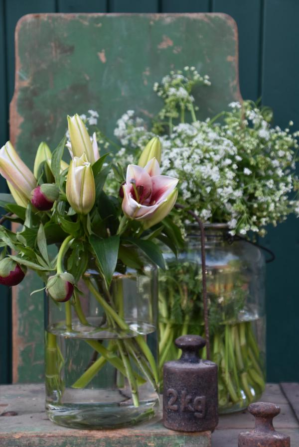 Pfingstrosen, Blumen, Waage, Blumenliebe, Lilien, Gewicht, Wilde Möhre