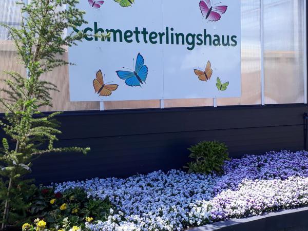 Schmetterlingshaus LaGa 2018, Bad Iburg, Sommer, Ausflugsziel, Gartenlust, Natur erleben