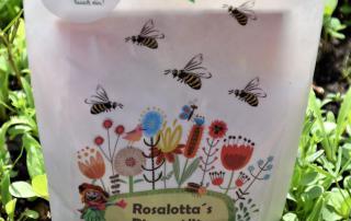Wunderle Rosalottas Bienentüte, Bienenrettung, Landesgartenschau Bad Iburg 2018, Blumenliebe, Gartenglück, Ausflug, Mai