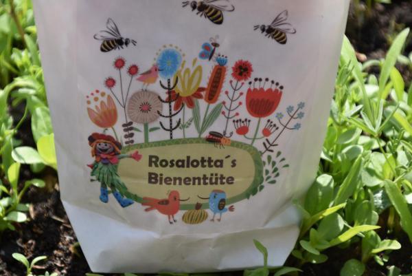 Rosalottas Bienentüte, Bienenrettung, Naturschutz, im Kleinen beginnen, Landesgartenschau Bad Iburg, Draussenzeit, Sommer, für Gartenfreunde