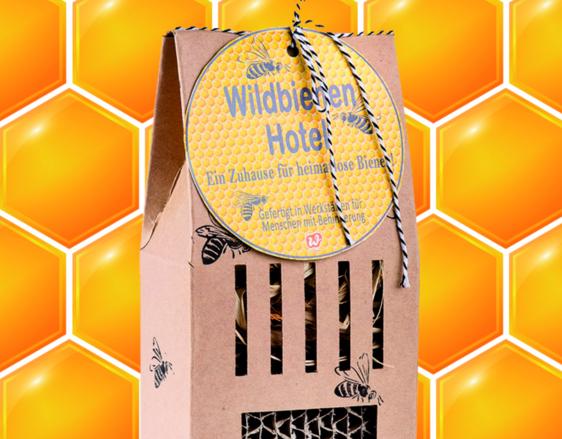 Wunderle Wildbienenhotel, Bienenrettung, Naturschutz, summ,summ,summ, Zuhause für heimatlose Bienen, Weltbienentag, Honig