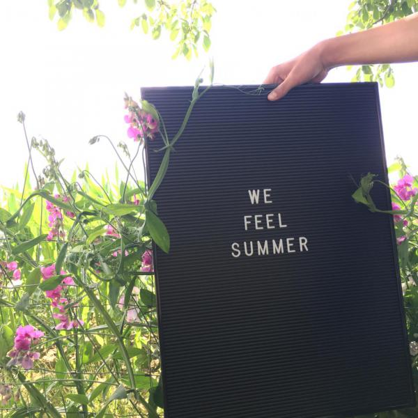 Letterboard we feel summer, Wicken, Sommerglück, genießen, Sonnenschein