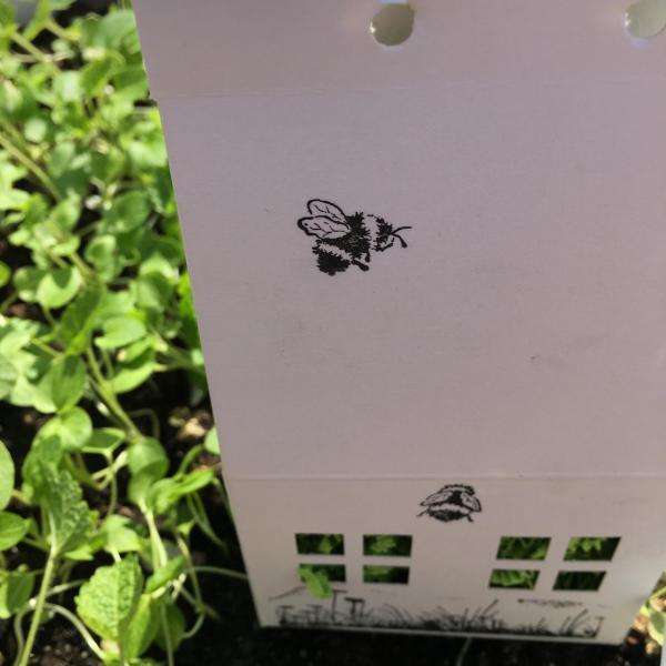 Wunderle Bienenhäuschen, Bienenrettung, summ, summ, summ, lecker, Blumenwiese, für fleißige Bienchen