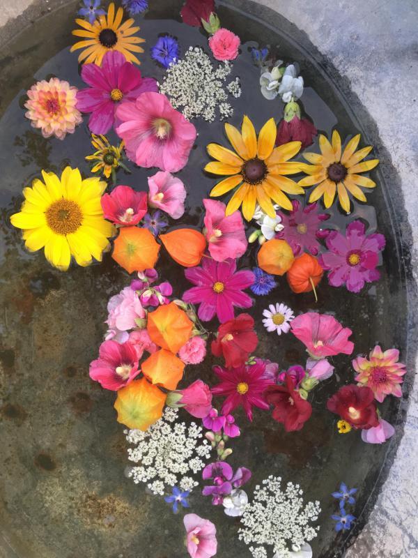 Zinkwanne, Gartenblumen, Sommerglück, Gartenlust, kunterbunt, bunt gemischt, im Wasser schwimmend