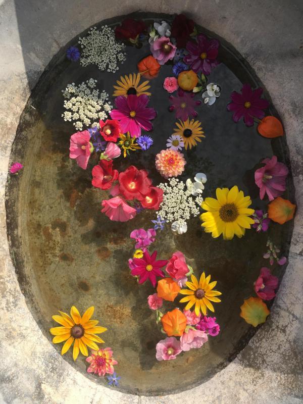 Blumen, Flowerpower, Sommerglück, Gartenlust, kunterbunt, Zinkwanne