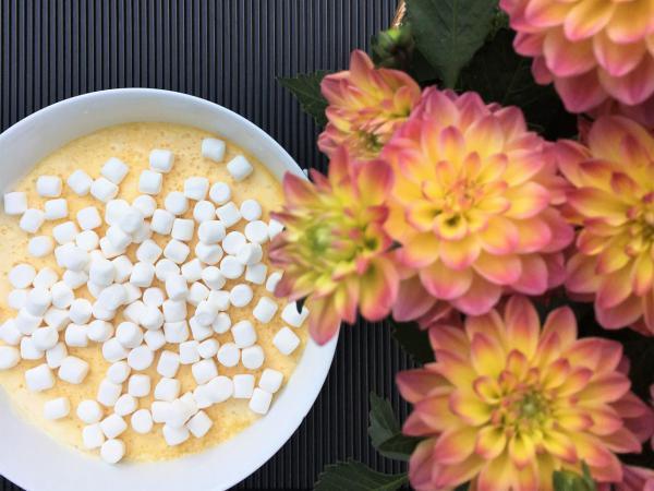 Solero-Dessert, Nachtisch, Mitbringsel, Buffet-Topper, Dahlien, Sommer, lecker, Rezept