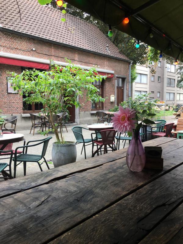 Antwerpen, Cafe, rosa Gerbera, draußen sitzen