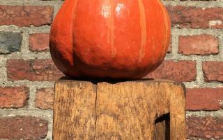 Oranger Kürbis, Herbst, deftige Herbstküche, lecker