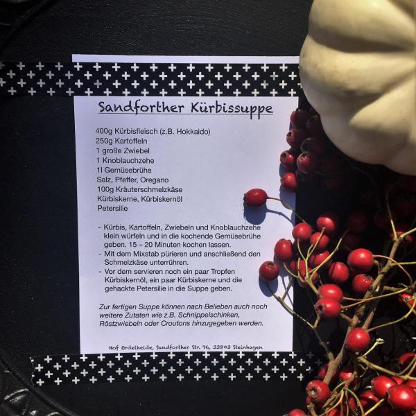 Rezept, lecker, Kürbissuppe, Empfehlung, Kürbisparade, Pummelchen, Herbstboten