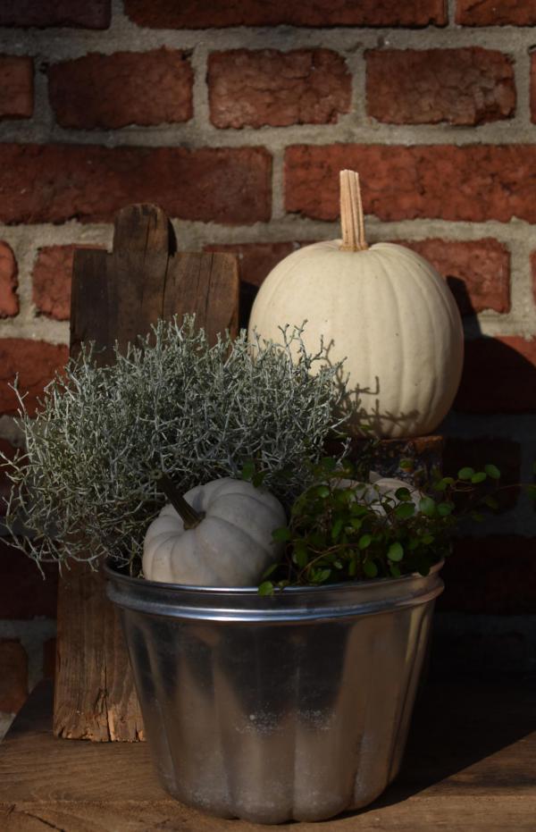 Herbstdeko, Weiße Kürbisse, schlicht, einfach