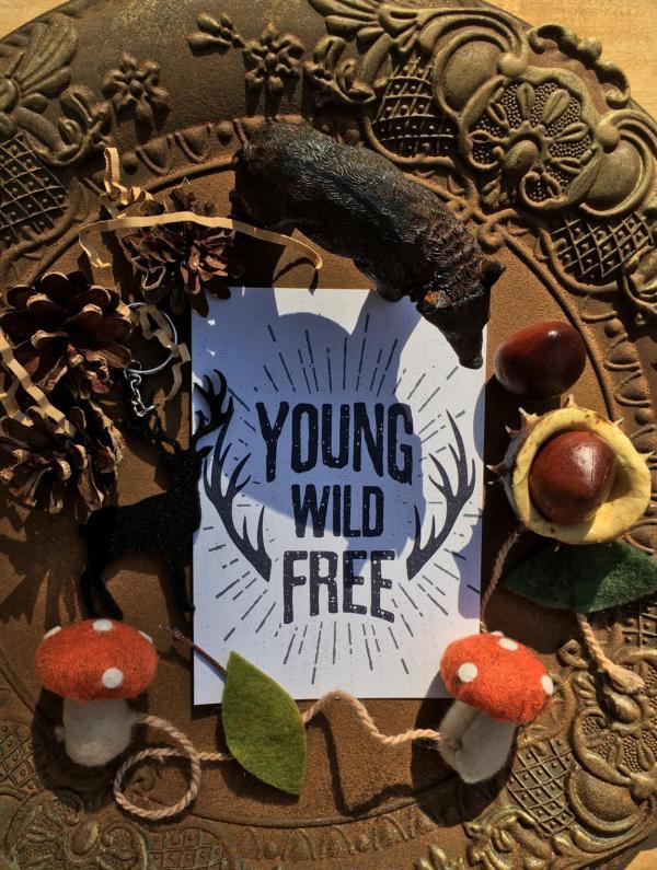Wunderle, Jägertüte, Herbst, 3. Jahreszeit, young wild free, Details