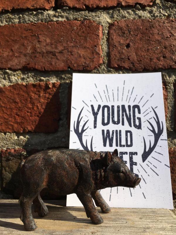Postkarte, Wildschwein, Herbst, Details, 3.Jahreszeit