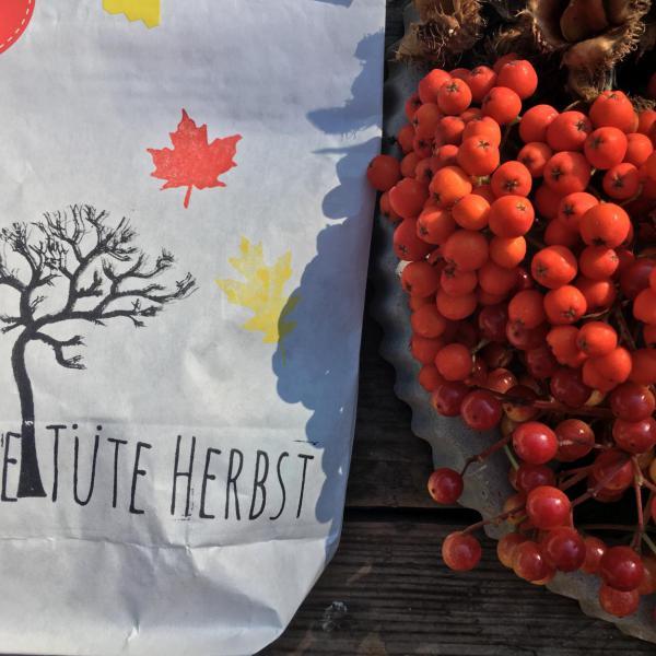 Eine Tüte Herbst, Beeren, Herbst, Vorfreude, 3.Jahreszeit