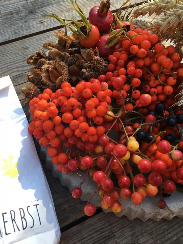 Herbst, Beeren, Hagebutten, Bucheckern, Wunderle 1 Tüte Herbst