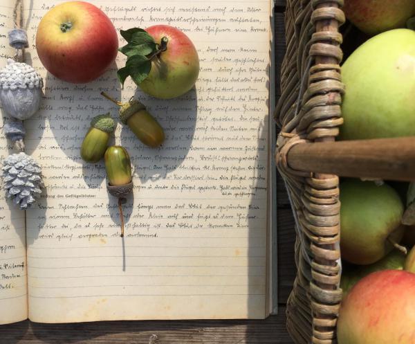 Herbst, Äpfel, Erntezeit, lecker, Eicheln, Geschriebenes