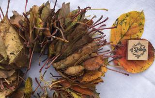 Herbst, Blätter, Stempel, Hello, Laubkranz