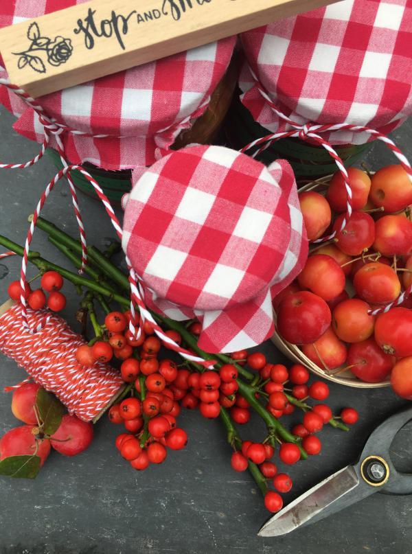 Marmelade, lecker, rot-weiß, rote Beeren, Zieräpfel