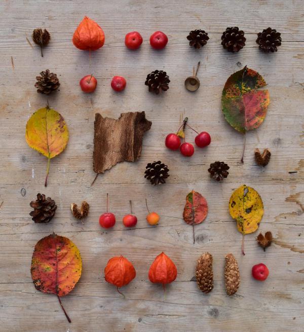 Herbst, Herbstboten, Flat Lay, Herbstbild, Herbstaccessoires