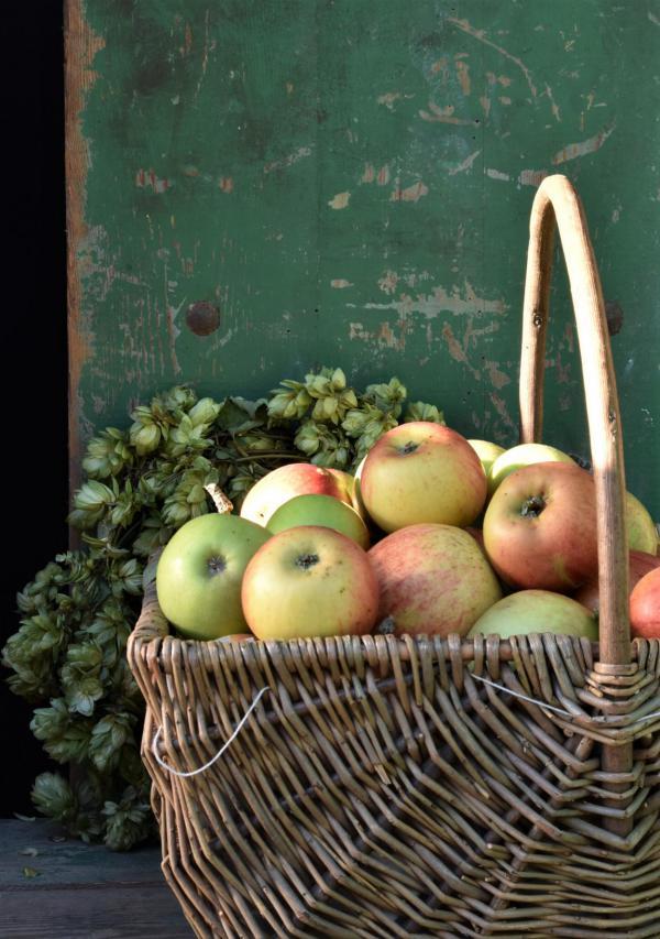 Äpfel, lecker, Herbst, gepflückt, Herbstküche