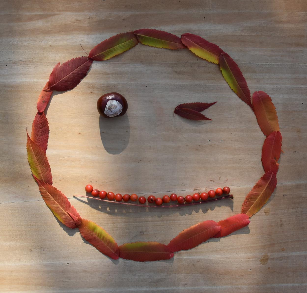 Smiley, Herbstdekoration, DIY, Blinzelauge