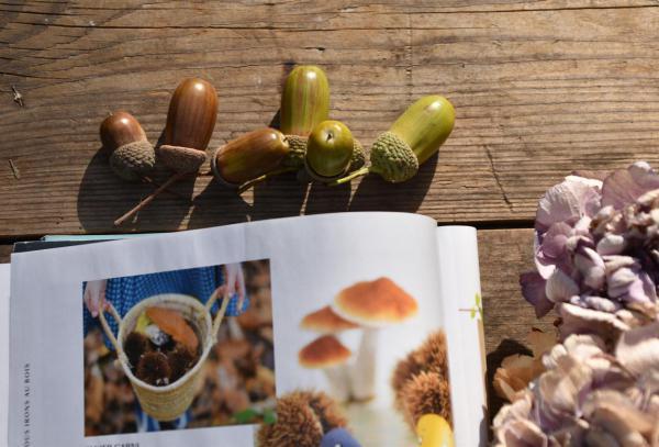 Zeitschrift, Marie Claire, Herbstdeko, Inspiration, Eicheln, getrocknete Hortensien