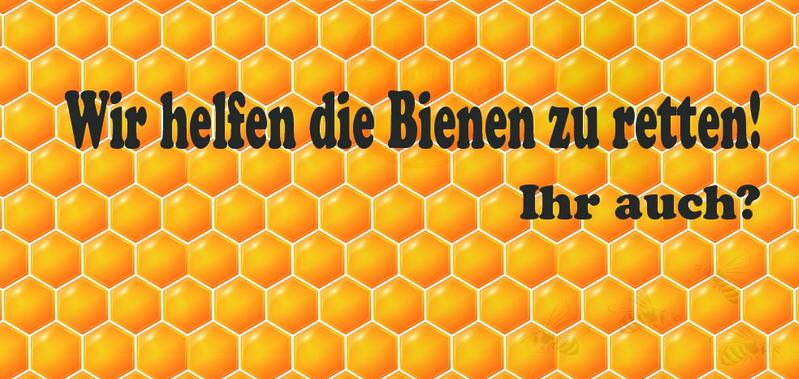Waben, Bienen, Bienenrettung,Wir helfen Bienen retten, Inspiration, Naturschutz