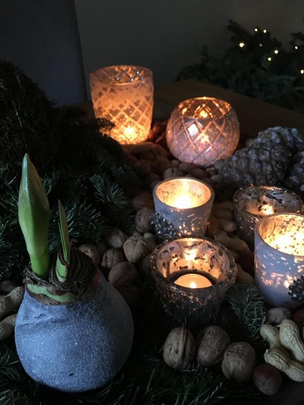 Kerzen, Weihnachten, Advent, Weihnachtsstimmung, Amarillis, Gemütlichkeit