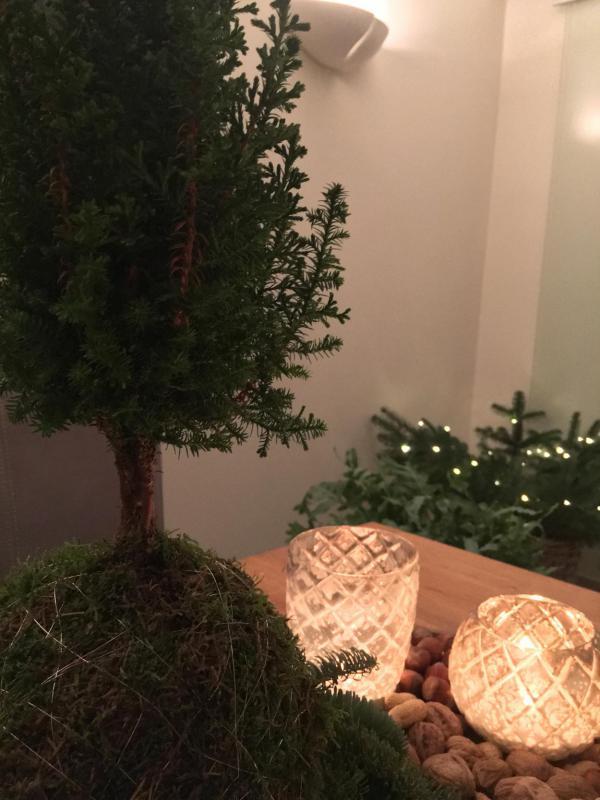 Kleiner Tannenbaum, Tischdeko, Advent, Weihnachten, Weihnachtsstimmung, Mooskugel
