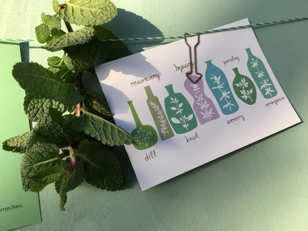 Postkarte, Wunderle, Detail, gefertigt in Werkstätten für behinderte Menschen, Kräuter, lecker