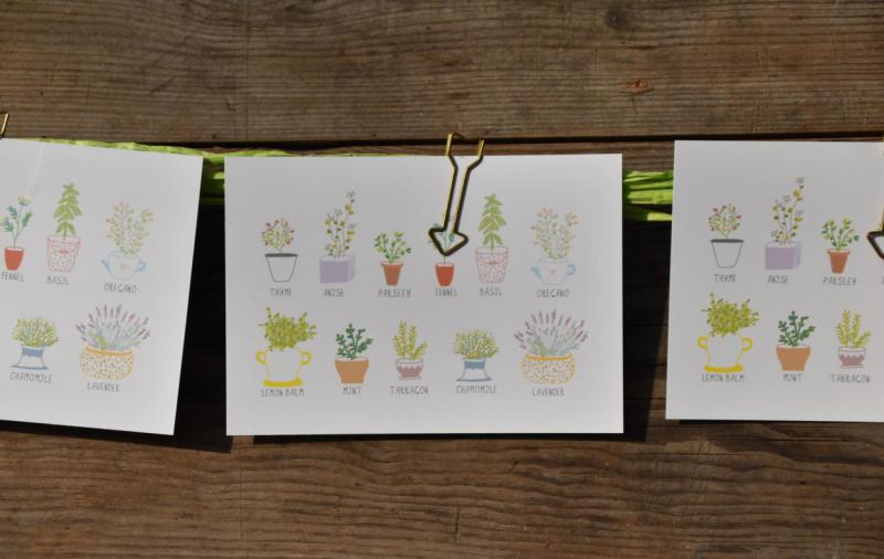 Wunderle, Postkarten, Detail, Kräuter, Frühling, lecker