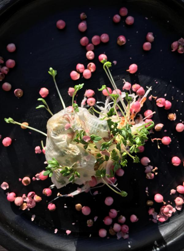 Kresse, rosa Pfeffer, Würzung, Frühling, lecker