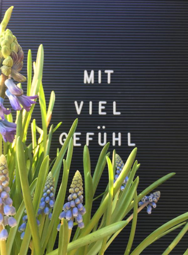 Letterboard, mit viel Gefühl, Frühling, verliebt, Frühjahrsblumen