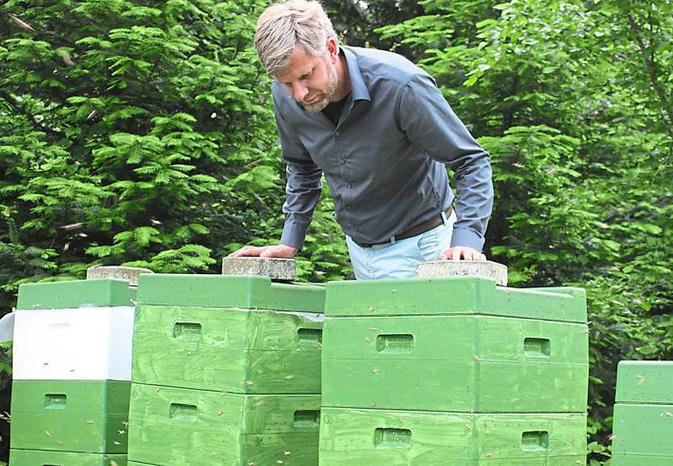 Imker, Bienenkörbe, Honig, save the bees, Bienenrettung