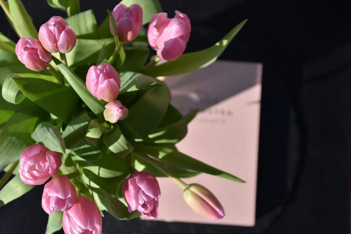 Tulpen, Frühling, 6 Minuten Tagebuch, Me Time, Frühlingserwachen
