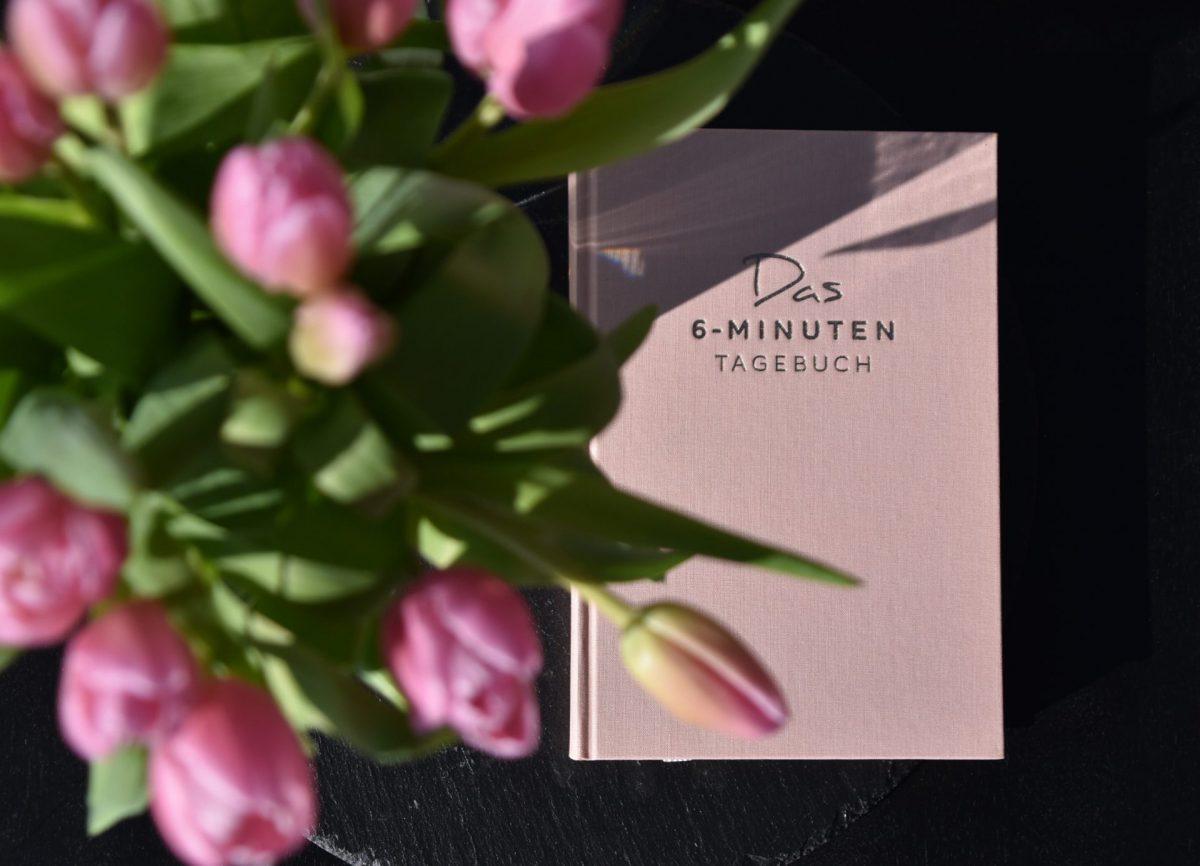 Tulpen, Frühling, Tagebuch, rosa, Me Time