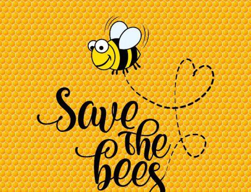 Save the bees, Bienenrettung 2019. Es weitersummen und einfach und effizient unter die Flügel greifen!