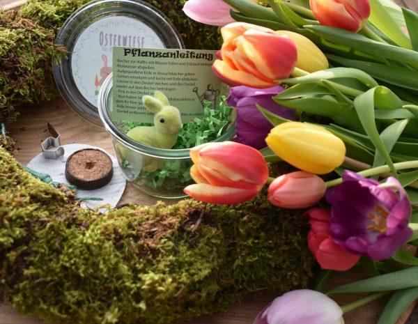 Wunderle, Osterwiese, frohe Ostern, Einweckglas, Frühling, gefertigt in Werkstätten für Menschen mit Behinderung