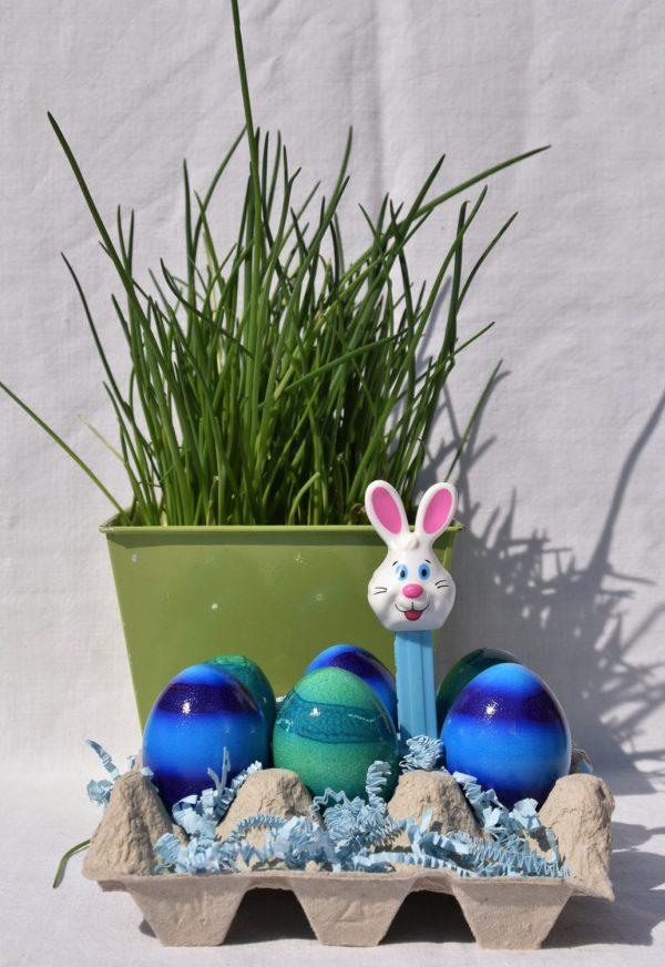 Ostereier, Frühling, Ostern, lecker, Schnittlauch, blau