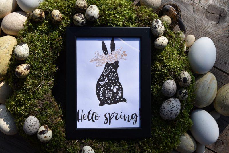 Hello Spring, Freebie, Free Printable, Ostern Frühling, Bild, Osterkranz