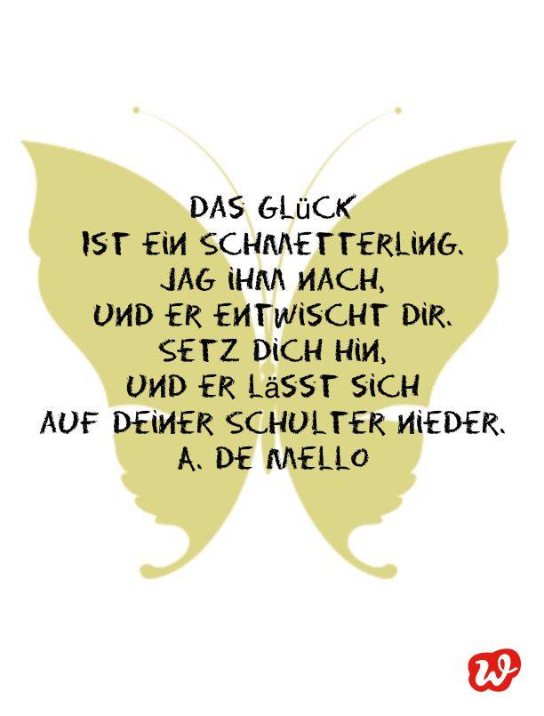Schmetterling hochzeit spruch Zitate Glück
