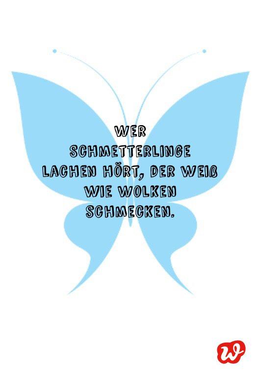 Schmetterling, Schmetterlingsquote, Spruch, Hellblauer Schmetterling, Spruch, Lettering