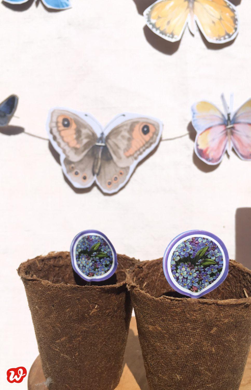 DIY, Schmetterlingsgirlande, Schmetterlingsblumensamen, Sommerdeko, Insektenschutz