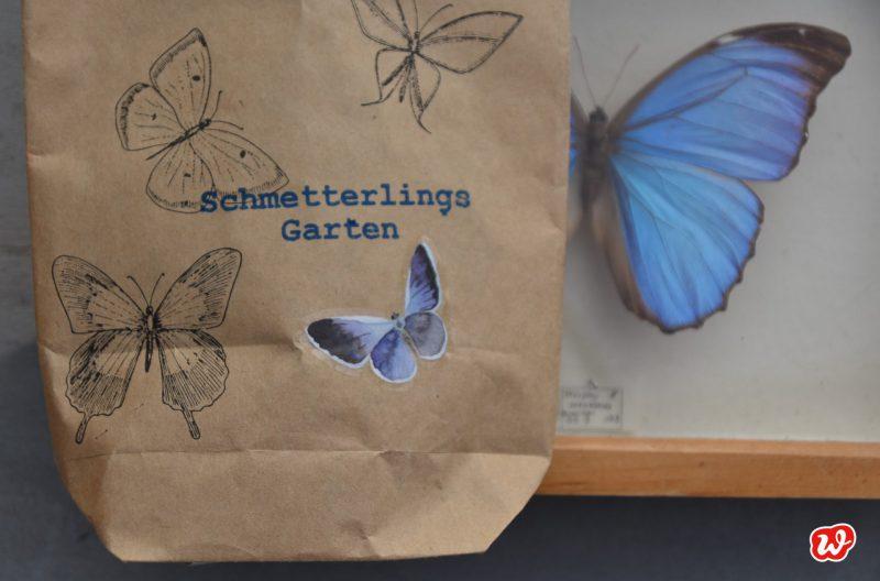 Wunderle, Wundertüte, Schmetterlingsgarten, Geschenk, Natur, Insektenschutz, Geschenkideen