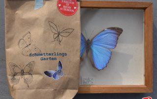 Wunderle, Wundertüte, Schmetterlingsgarten, Insektenschutz, Natur, insektenfreundlicher Garten, Geschenk, Geschenkideen