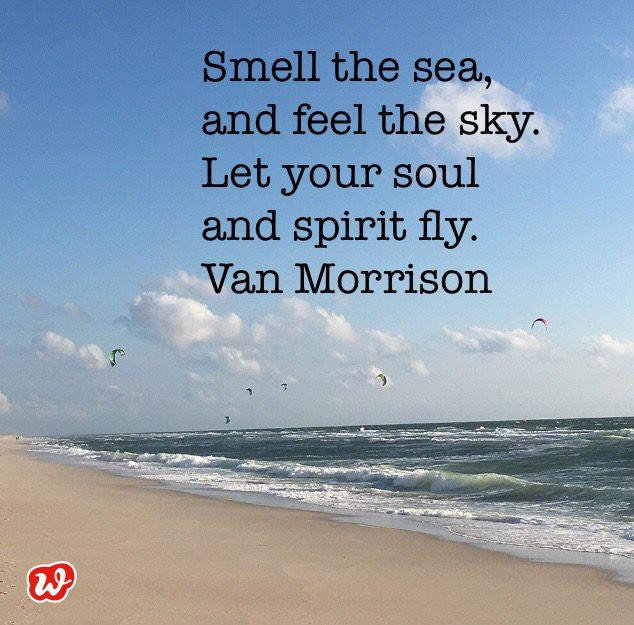 Kitesurfer, Strand, Sommerspruch, Lebenslust, Lässigkeit